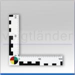 Winkel-Lineal, weiß